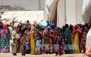 Đoàn xe chở người dân chạy nạn tại Iraq bị đánh bom