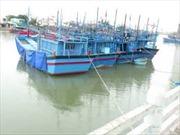 Quảng Ngãi cứu sống hai ngư dân trên tàu cá bị chìm