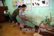 Quảng Ngãi khẩn trương khắc phục hậu quả mưa lũ