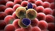 """Phát hiện phương pháp """"vô hiệu hóa"""" sự lan rộng tế bào ung thư"""