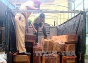 Liên tiếp bắt giữ vận chuyển gỗ lậu, động vật hoang dã