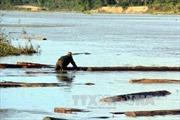 Kon Tum liên tiếp phát hiện gỗ lậu vô chủ