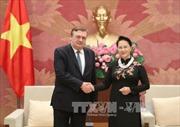 Chủ tịch Quốc hội Nguyễn Thị Kim Ngân tiếp Đại sứ Thụy Điển và Đại sứ Hungary