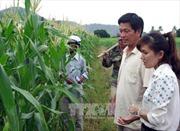 APEC 2017: Ưu tiên về an ninh lương thực và nông nghiệp thích ứng với biến đổi khí hậu