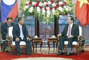 Chủ tịch nước Trần Đại Quang tiếp Bộ trưởng An ninh Lào