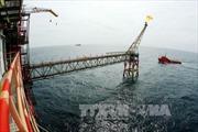 Quý 1, khai thác dầu khí vượt kế hoạch
