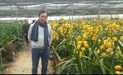 Sản xuất nông nghiệp sạch – cần 'đòn bẩy'  từ Agribank