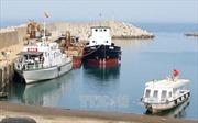 Đảo Cồn Cỏ đón đoàn khách du lịch đầu tiên