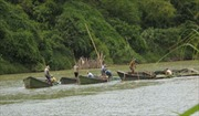 'Cát tặc' ngang nhiên khai thác trên sông Cái, Khánh Hòa