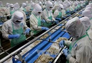 Xuất khẩu thủy sản tháng 4 ước đạt 2,1 tỷ USD