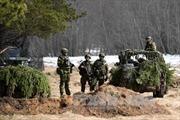 NATO tiến hành tập trận tại Estonia