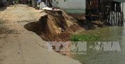 An Giang: Sạt lở nghiêm trọng làm sập 6 nhà dân