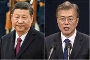 Ông Tập Cận Bình điện đàm với tân Tổng thống Hàn Quốc