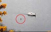'Quái vật hồ Loch Ness' bất ngờ trồi lên, ngỏng cổ di chuyển gần tàu du lịch