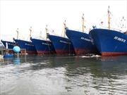 Đóng tàu vỏ thép ở Bình Định: Hợp đồng một đằng, thực hiện một nẻo