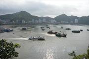 26 người nhập viện, nghi ngộ độc hải sản khi đi du lịch Cát Bà
