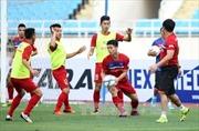 Đội tuyển bóng đá Việt Nam tăng 5 bậc trên Bảng xếp hạng FIFA