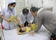Không lơ là trong phòng chống, điều trị dịch bệnh sốt xuất huyết
