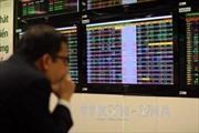 Thị trường chứng khoán phái sinh hứa hẹn rất sôi động