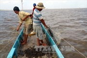 Cà Mau cần quản lý chặt chẽ việc nuôi thủy sản ở bãi bồi