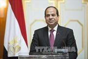 Dấu mốc quan trọng trong lịch sử quan hệ hai nước Việt Nam - Ai Cập