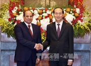 Chủ tịch nước Trần Đại Quang hội đàm với Tổng thống Ai Cập