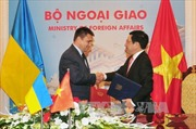 Kết quả chuyến thăm chính thức Việt Nam của Bộ trưởng Ngoại giao Ukraine
