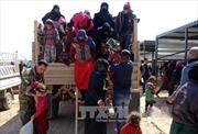 Quân đội Iraq tăng cường không kích trước chiến dịch giải phóng Hawija