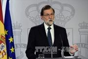 Đình chỉ phiên họp dự kiến tuyên bố độc lập của vùng Catalunya