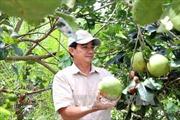 Họp báo công bố danh sách 87 nông dân xuất sắc và gương mặt 30 năm đổi mới