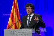 Catalonia sẽ áp dụng luật trưng cầu ý dân để tuyên bố độc lập