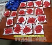 Quảng Trị khen thưởng Ban chuyên án phá vụ vận chuyển 30.000 viên ma túy tổng hợp