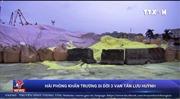 Hải Phòng khẩn trương di dời hơn 3 vạn tấn lưu huỳnh