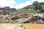 Nhật Bản hỗ trợ các địa phương bị lũ lụt tại Việt Nam