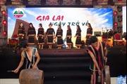 Tổ chức thành công đêm nhạc 'Gia Lai ngày trở về'