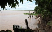 Vĩnh Long: Người dân xã Quới Thiện ám ảnh nỗi lo sạt lở bờ sông
