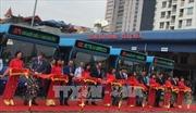 Hà Nội đưa vào khai thác xe buýt mới tiêu chuẩn châu Âu
