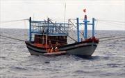 Đưa thuyền viên bị đau nặng trên biển vào đất liền an toàn