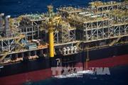 Giá dầu giảm tuần đầu tiên trong sáu tuần