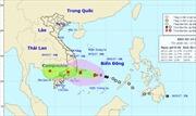 Ngày 19/11, bão số 14 sẽ đi vào đất liền các tỉnh Khánh Hòa, Ninh Thuận, Bình Thuận