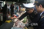 Bất cập trong quản lý giết mổ gia súc, gia cầm ở Lạng Sơn