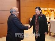 Phó Chủ tịch Thường trực Quốc hội Tòng Thị Phóng tiếp Trưởng đại diện Unicef tại Việt Nam
