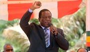 Chân dung nhân vật 'cá sấu' dự kiến trở thành tân Tổng thống Zimbabwe