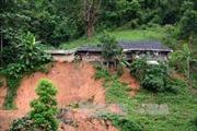 Quảng Nam chủ động di dời dân ở khu vực có nguy cơ sạt lở