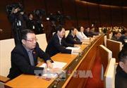 Quốc hội thông qua Luật Quy hoạch: Tầm nhìn quy hoạch cấp quốc gia phải từ 30 - 50 năm
