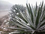 Nhiệt độ ở Mẫu Sơn giảm còn 1 độ C