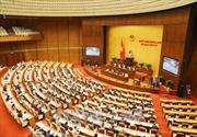 Tinh thần đổi mới, sáng tạo, hành động tiếp tục được thể hiện rõ tại kỳ họp Quốc hội