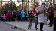 Trung Quốc rúng động trước cáo buộc trường mẫu giáo bạo hành trẻ em bằng kim tiêm