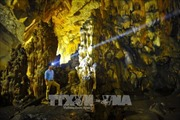 Kết nối du lịch Ninh Bình - Nghệ An - Hà Tĩnh