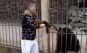 Clip người đàn ông dùng súng AK bắn gấu vì... tò mò gây phẫn nộ